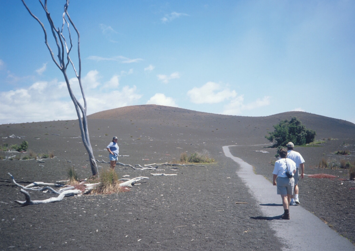 Discover Hawaii's Active Volcanoes – Hawaii Teacher Trip July 2018