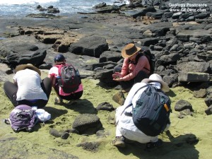Hawaii Teacher Trip
