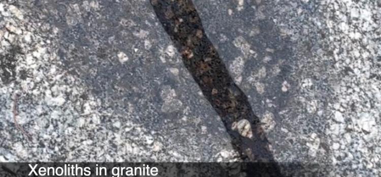 Xenoliths in granite